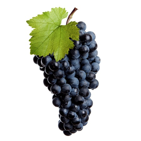 bunch of grapes: Fresh bunch of redwine on a white background Stock Photo