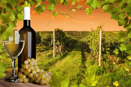 Bouteille et verre de vin et les vignobles du coucher du soleil