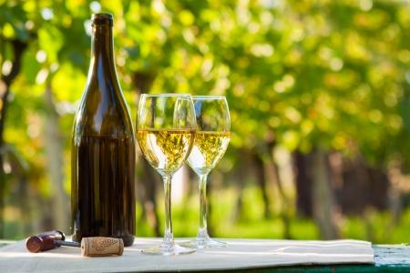 Twee glazen witte wijn en fles Stockfoto