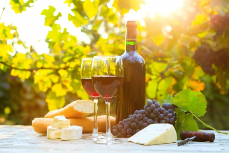Two glasses of red wine, bottle, cheese and baguette Stok Fotoğraf - 23073806