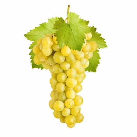 Manojo fresco de las uvas de vino blanco sobre un fondo blanco
