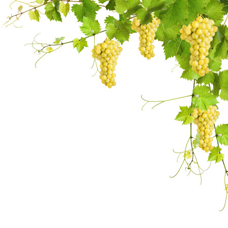 Collage of vine leaves and yellow grapes on white background