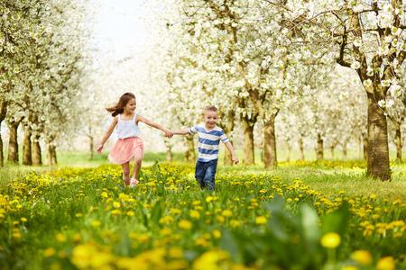 Il ragazzo va con la ragazza in un frutteto in fiore Archivio Fotografico - 41668721