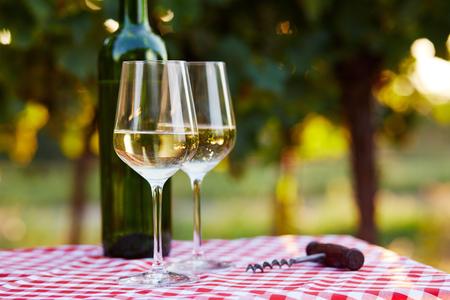 white wine: Two glasses of white wine on table