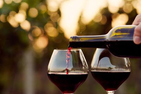 bodegas: Verter el vino tinto en vasos en la viña, tonificado