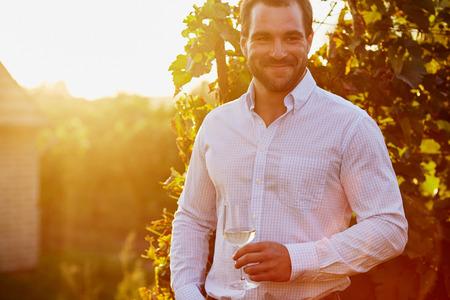 tomando vino: Hombre con un vaso de vino blanco en la mano, al atardecer en la viña. tonificado Foto de archivo