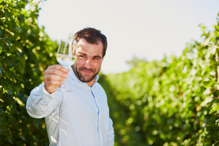 winemaker: Winemaker tasting white wine in vineyard at sunny day. Stock Photo