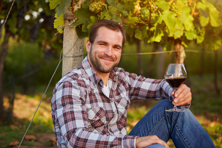 winemaker: Winemaker siting in vineyard with a glass of red wine, toned.