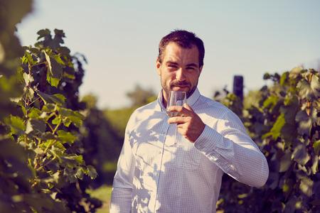 winemaker: Winemaker tasting white wine in vineyard at sunny day. Toned