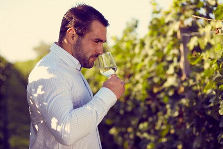 Enólogo vinho branco degustação na vinha no dia ensolarado. tonificado Imagens