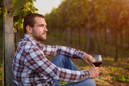 siting: Winemaker siting in vineyard with a glass of red wine, toned