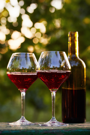 Two glasses of red wine and bottle in the vineyard
