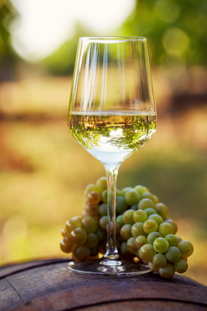A glass of white wine with grapes on a barrel Stockfoto