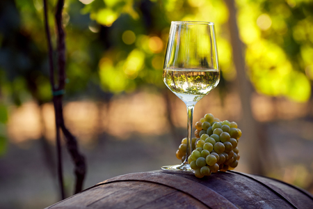 A glass of white wine with grapes on a barrel Foto de archivo