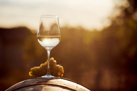 Glass of white wine with grape at sunset