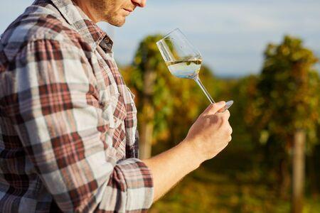 Man tasting white wine on vineyard in autumn Stock Photo