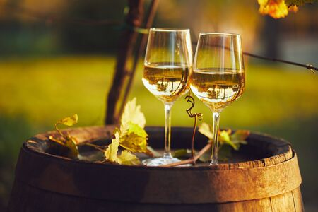 Two full glasses of white wine on wooden barrel in autumn Foto de archivo - 133537415
