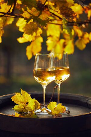 Two glasses of white wine on a wooden barrel at sunset Foto de archivo - 133537414