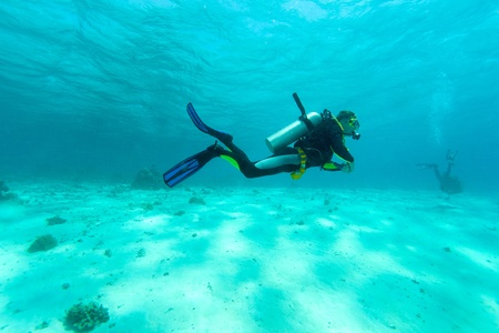 nurkować: Diver w pÅ'ytkiej wodzie