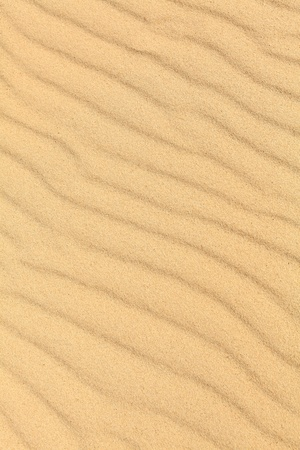 Sand waves on the highest dune in Europe - Dune of Pyla (Pilat), Arcachon Bay, Aquitaine, France Stock Photo