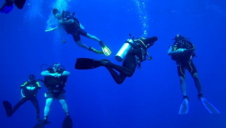 Group of divers on 5-min safety stop, Cuba Stock Photo - 15126767