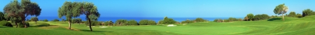 panoramic: Wide panorama of golf field with sea and olive trees,  Paphos, Cyprus