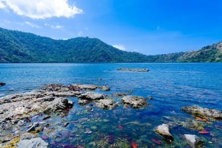 komodo: Lanscape estate del Lago a Isola di Komodo, Indonesia Archivio Fotografico