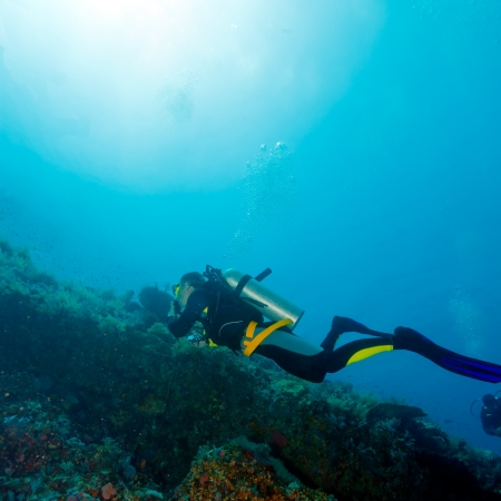 Silhouette of Young Man Scuba Diver between Water Surface and Sea Bottom 版權商用圖片