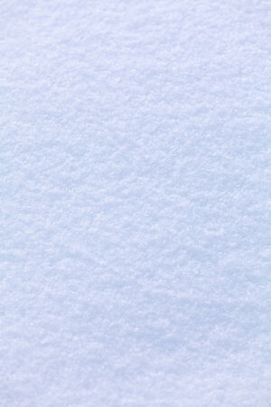 Clean White Snow Background photo