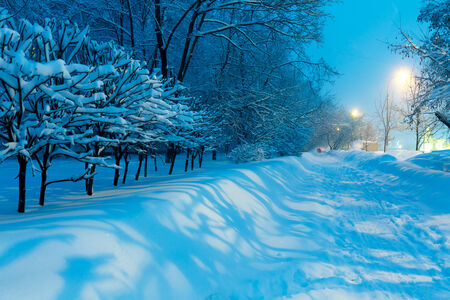 Illuminated Night Winter City Scene photo