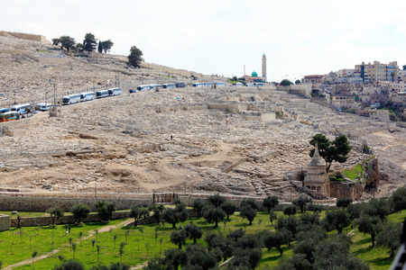 Ancient Cemetery at Olives Mountain, Jerusalem, Israel photo