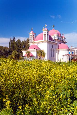 mustard field: Orthodox Church and Mustard Field near Galilee Sea, Israel