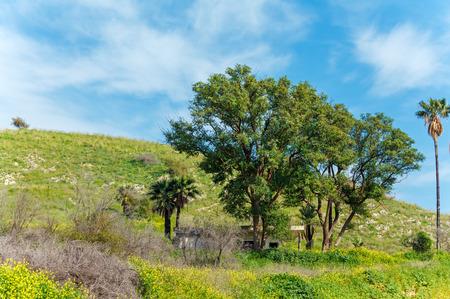 galilee: Landscape around Galilee Sea - Kinneret Lake Stock Photo