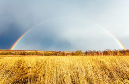 agriculture landscape: Beautiful Full Rainbow above Farm Field