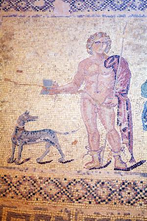 greek mythology: Mosaic floors of elite romans villas (3-5th.c) with scenes from Greek mythology,