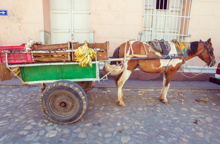 horse cart: Horse Cart in the old town, Trinidad, Cuba Stock Photo
