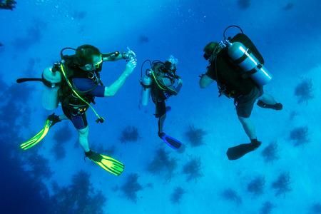 5 分間の安全停止、キューバのダイバーのグループ 写真素材