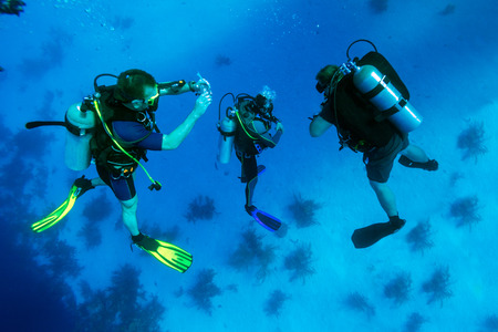 diving: Group of divers on 5-min safety stop, Cuba Stock Photo