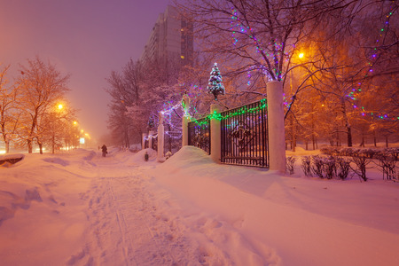 winter road: Illuminated Night Winter City Scene
