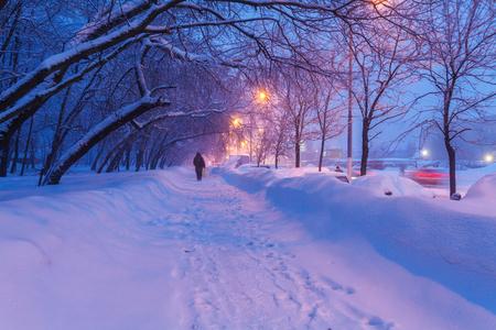 winter park: Illuminated Night Winter City Scene