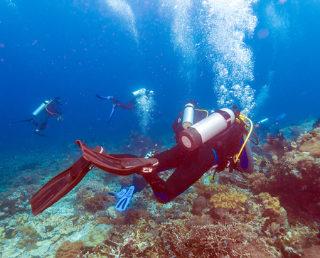 zanclus cornutus: Group of divers going deep, Bali