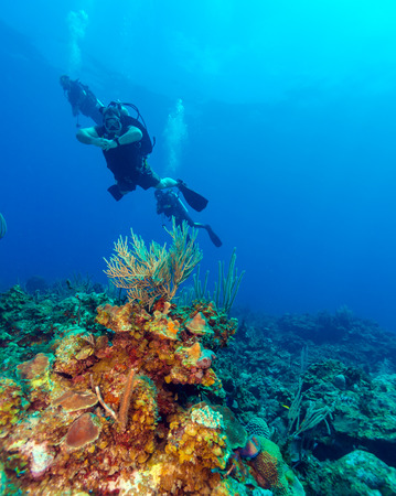 Colorfull reef and group of divers, Cayo Largo, Cuba Stock Photo