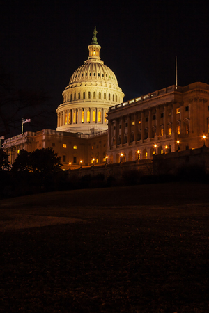 congressman: Capitol Building illuminated by night lights, Washington DC, USA