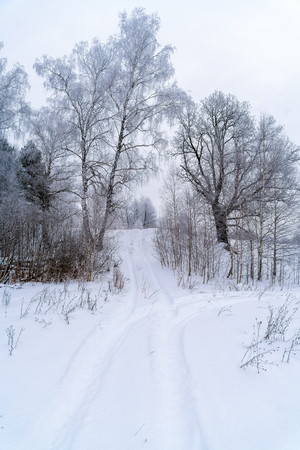 quad: Winter road on a snowy slope, paved Quad Stock Photo