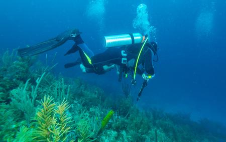 Scuba diver with speargun underwater scene, Cuba