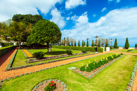 Flowers of Bahai Garden, Haifa, Israel