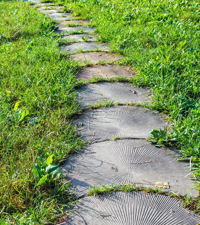 Stepping Stone Walkway Garden Path. Stones Are Like The Tree. Stock Photo    62084837
