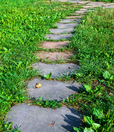 Stepping Stone Walkway Garden Path. Stones Are Like The Tree. Stock Photo    62084836