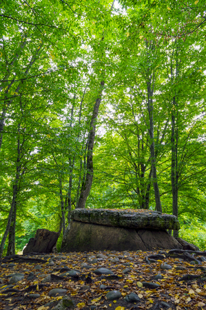 Ancient dolmen on field autumn, Adygeya, Russia