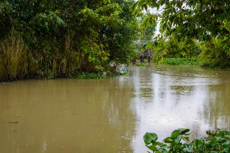 Village near small canal in Mekong delta Vietnam Stock Photo